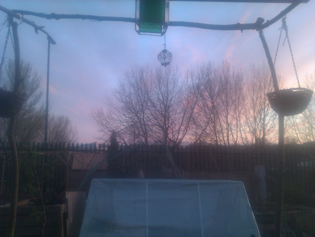 View from allotment shed